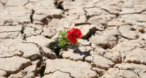 Are you as resilient as you think you are